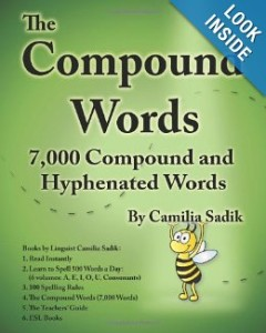 The Compound Words Book by Camilia Sadik